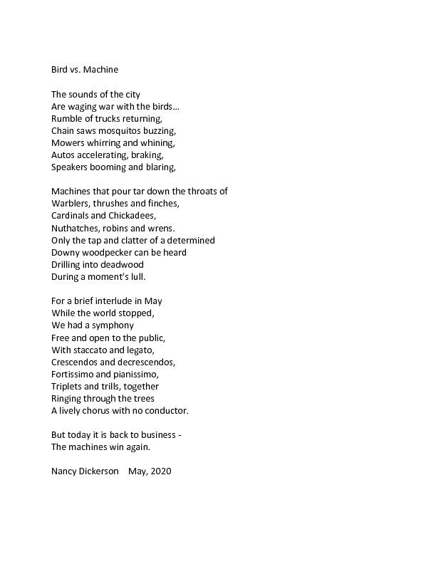 Bird war poem.pdf