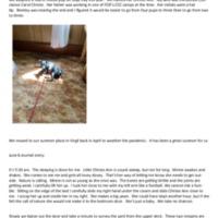 Doug Bentley  Bentley the Rescue Dog.pdf
